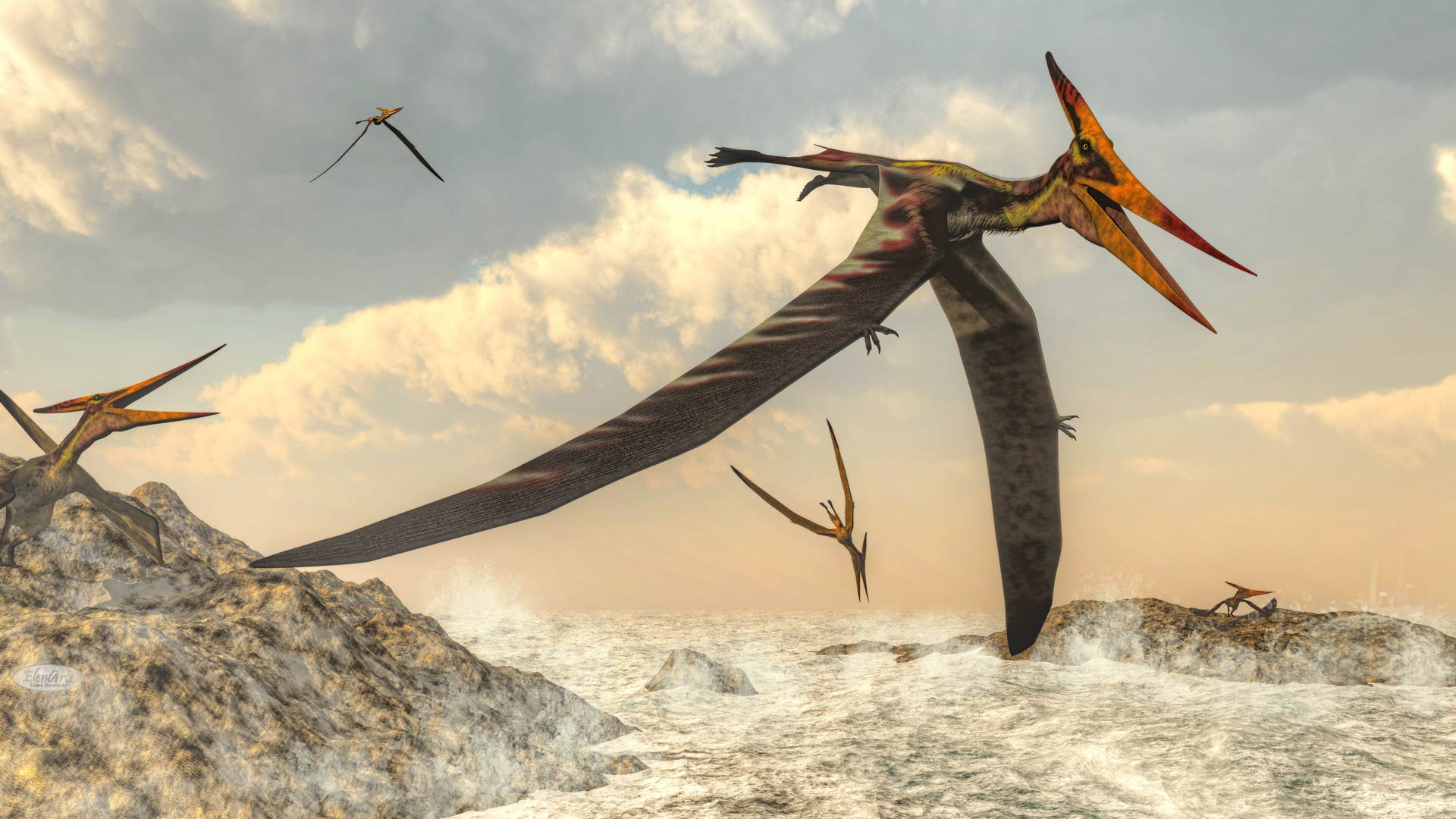 Pteranodon birds flying – 3D render