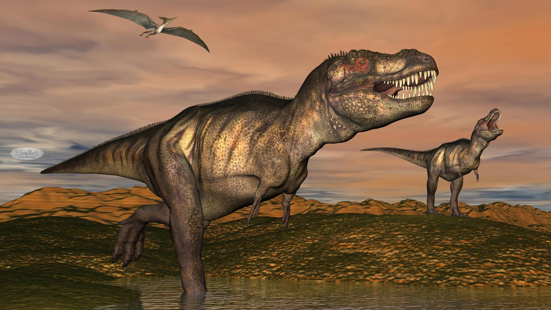 Tyrannosaurus rex dinosaurs – 3D render