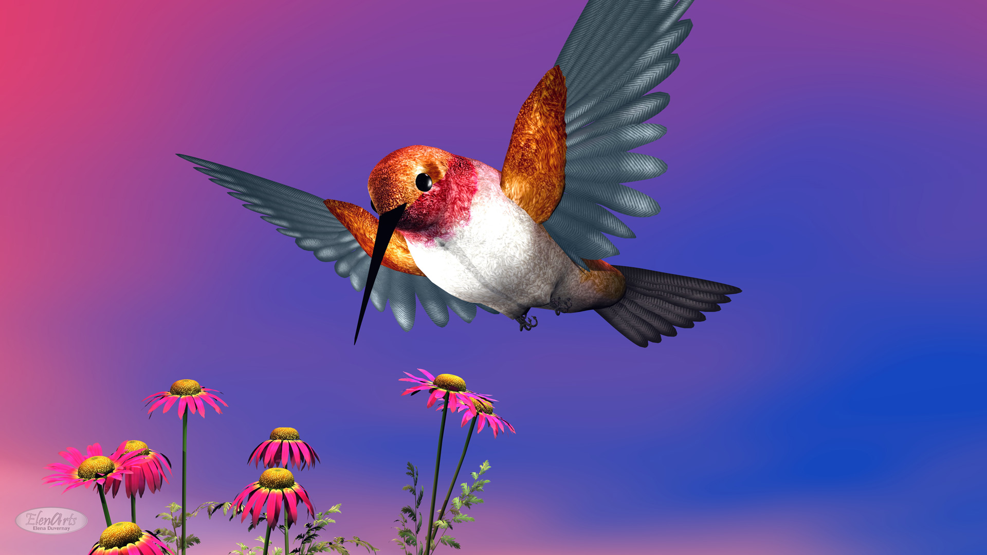 Rufous hummingbird flying upon red daisies by cloudy day - 3D render