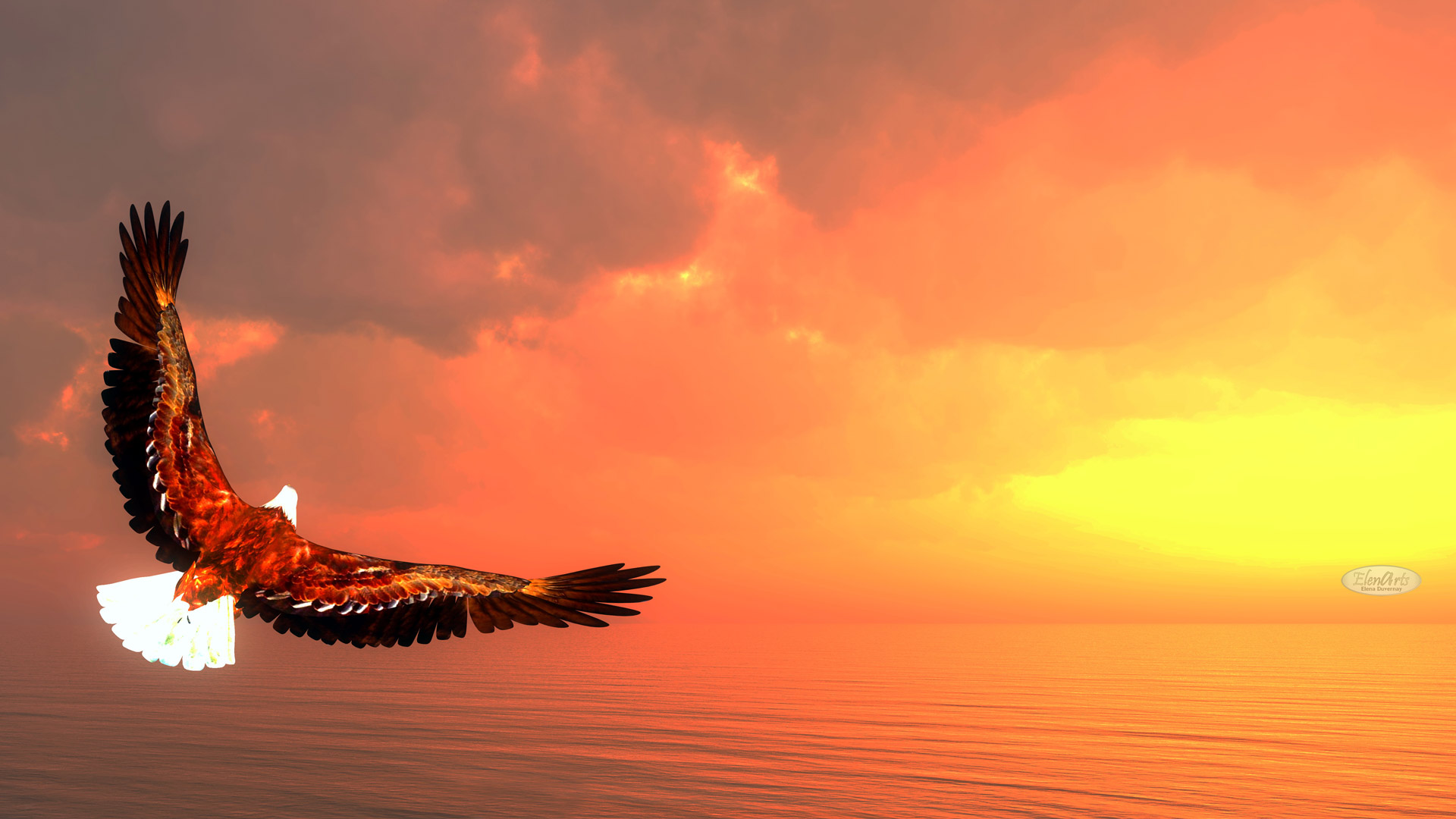 Eagle flying upon ocean by sunset – 3D render