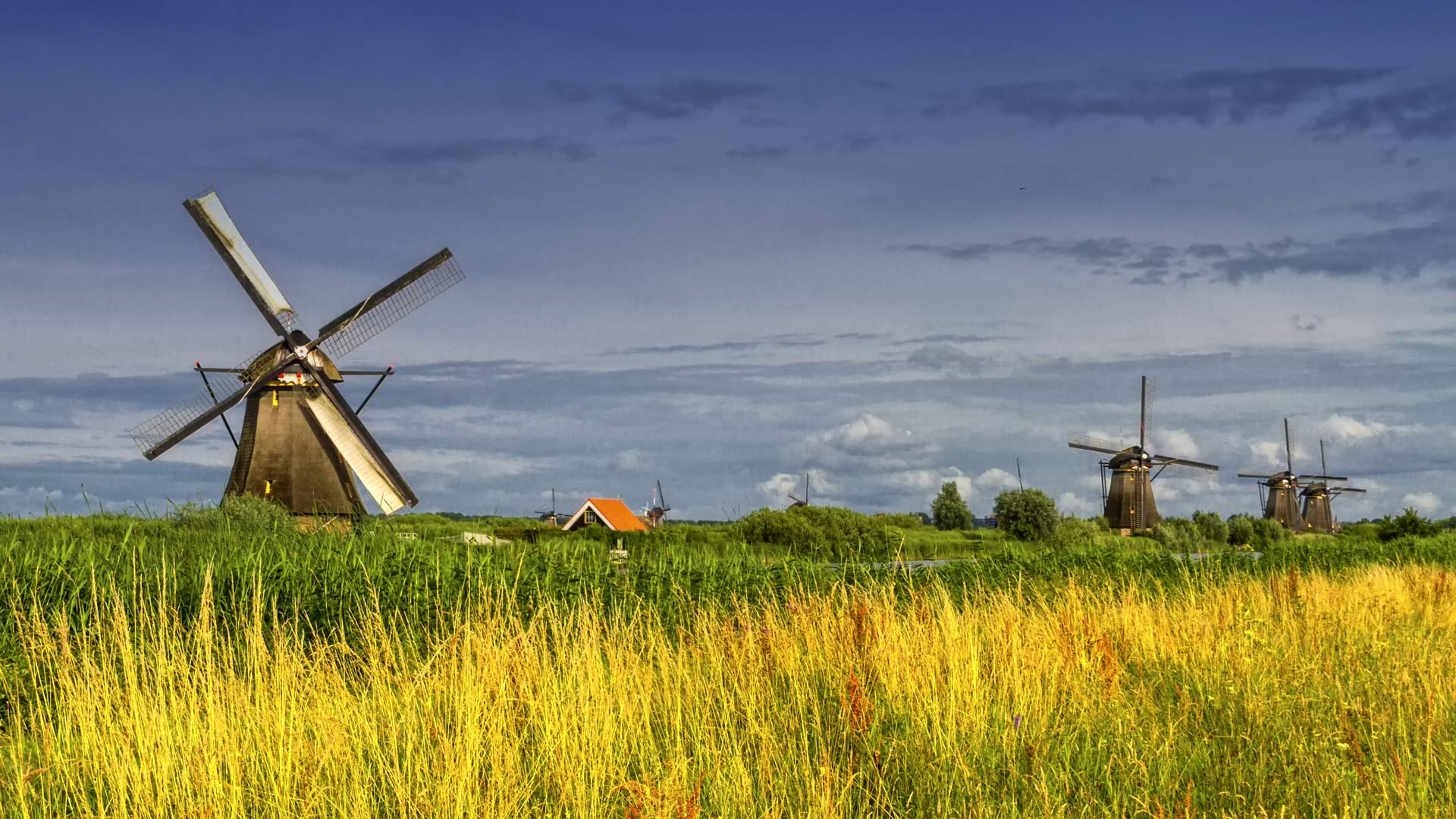 Famous historical windmills in Kinderdijk, Holland, Netherlands