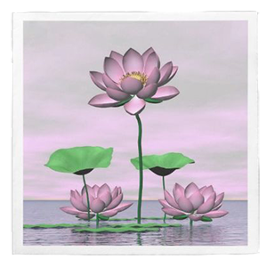 pink waterlilies and lotus flowers zazzle paper napkins