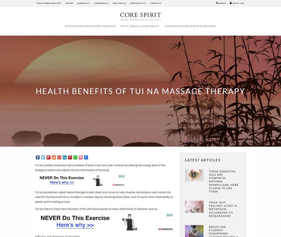 Core Esprit website : zen landscape to illustrate Tui Na massage therapy article