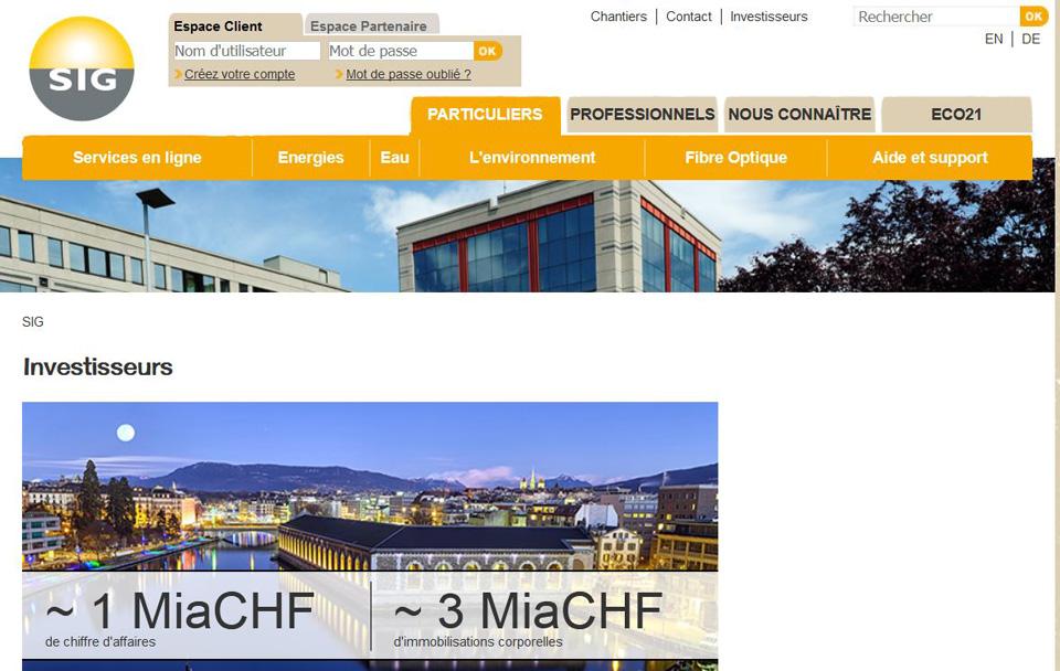 SIG (Geneva Electricity provider, Switzerland) : Geneva night landscape to illustrate the investor page.