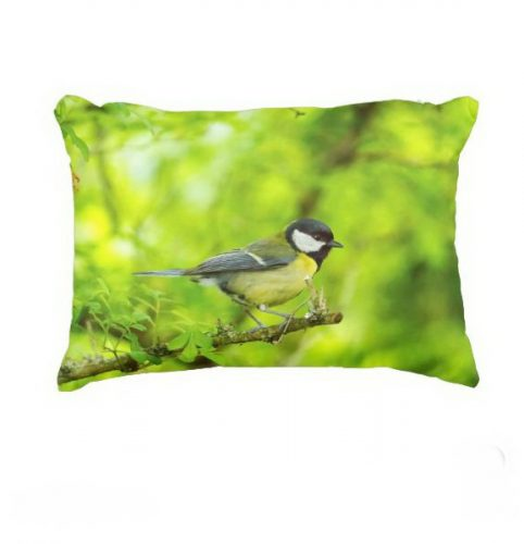 Great tit, parus major accent pillow