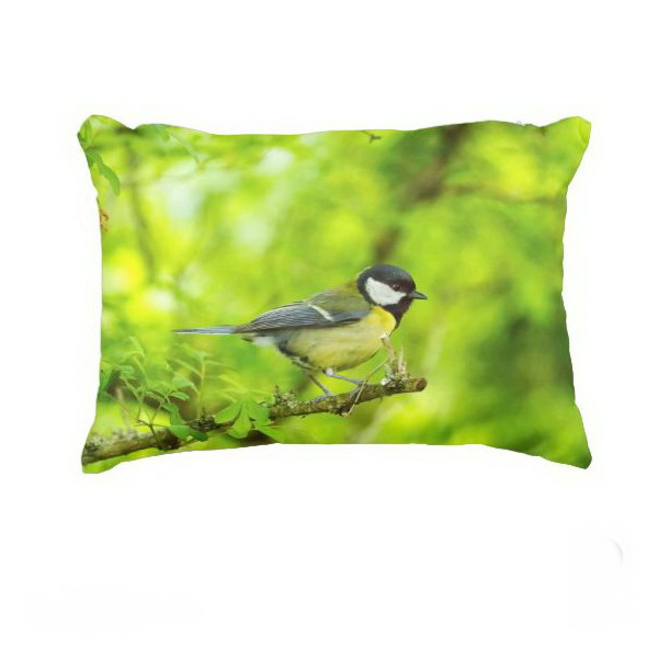 Great tit, parus major accent pillow_small_white
